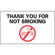 1810 - No Smoking Reminders Static Cling Sticker (100)